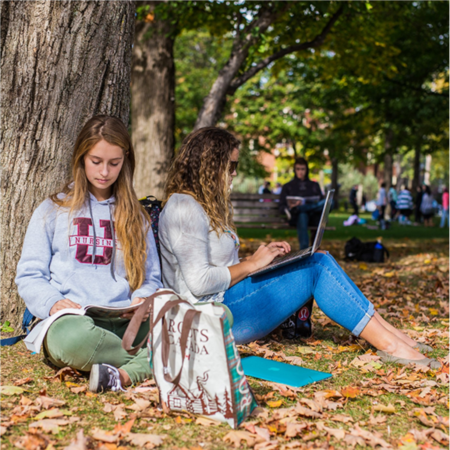 Two female students studying on the lawn